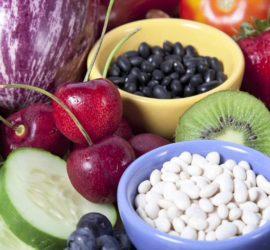 pain free diet